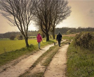 walking the dogs.jpg