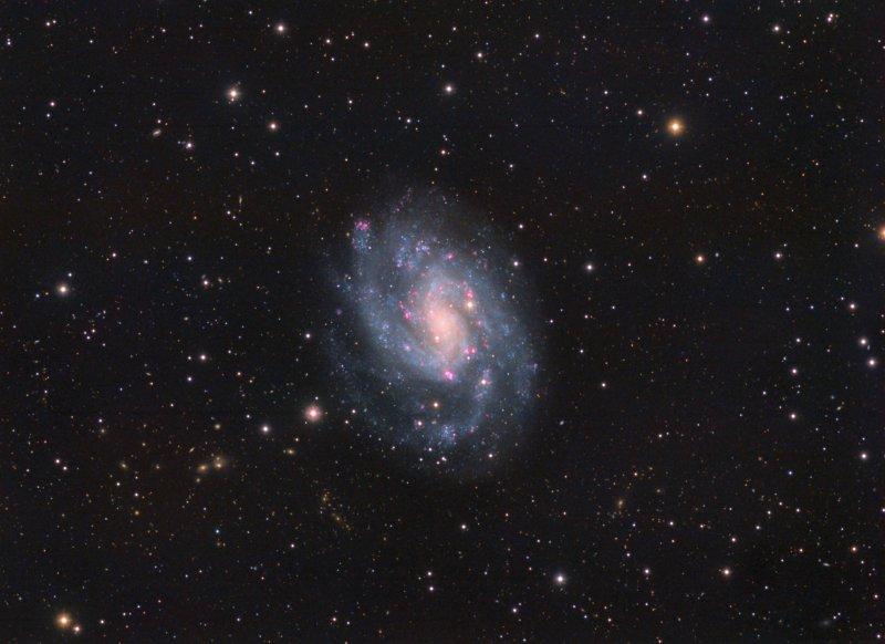 NGC300_HaLRGB.jpg