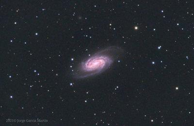 NGC 2903, Leo barred spiral galaxy