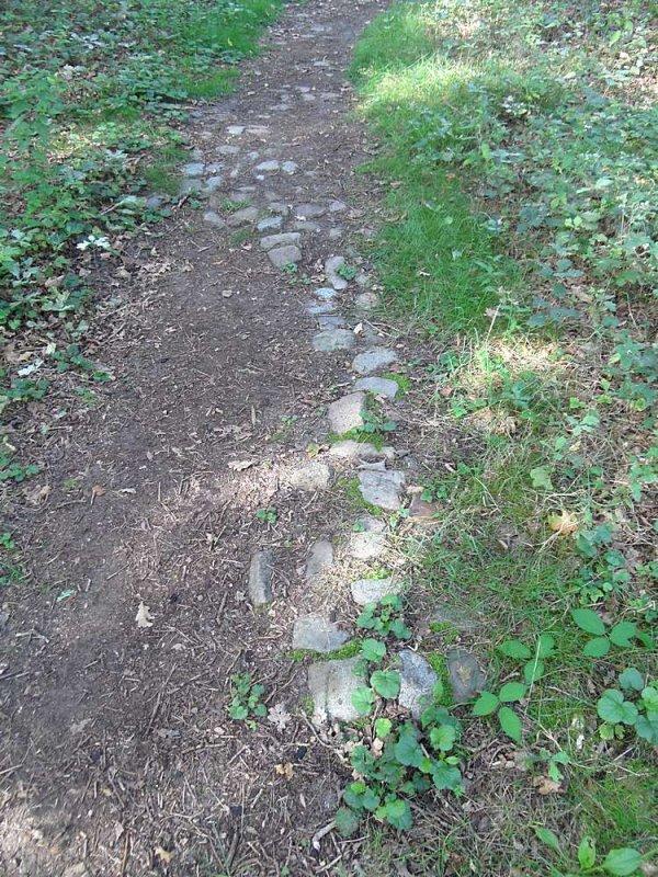 14_dak-wandeling.jpg