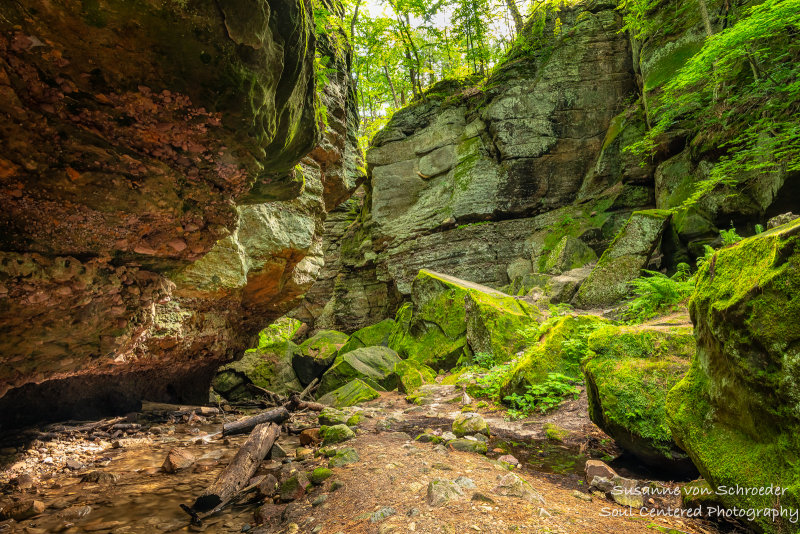 Parfreys Glen, gorge 4