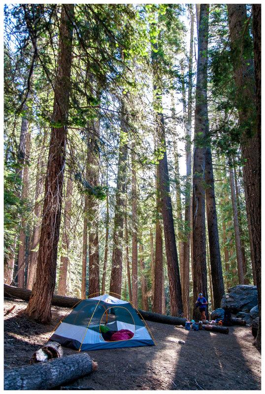 Bearpaw Meadow campsite