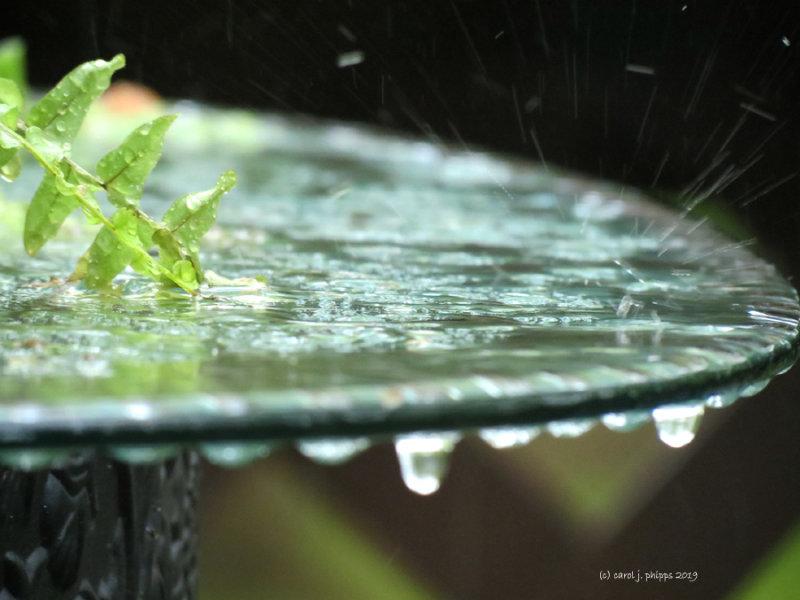 Raindrops Keep Fallin - Song