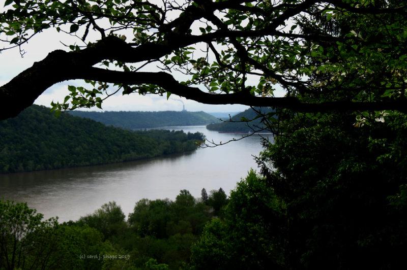 A River Runs Through It, Film