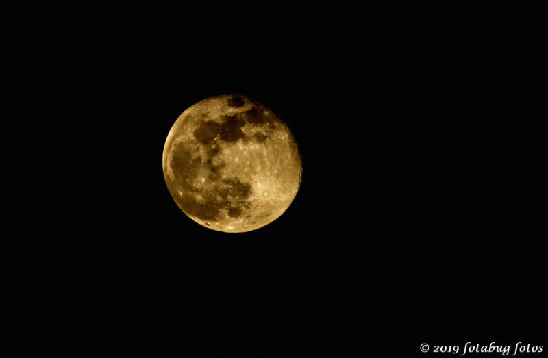The Worm Moon of March 20th