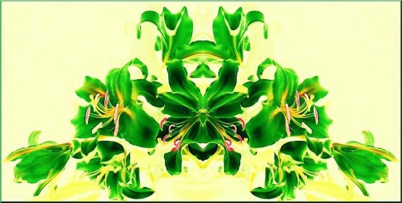 Green Lily Rorschach