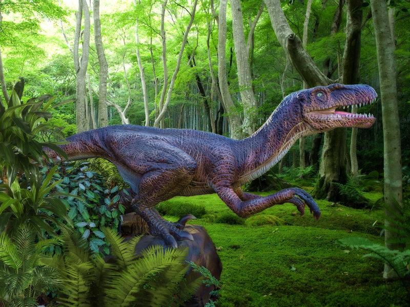 Jurassic Park 18