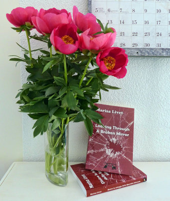 Looking Through a Broken Mirror - Would you like to receive a complimentary copy?