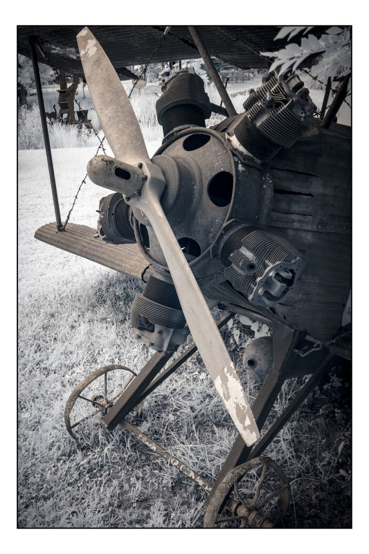 Airplane Sculpture - Infrared