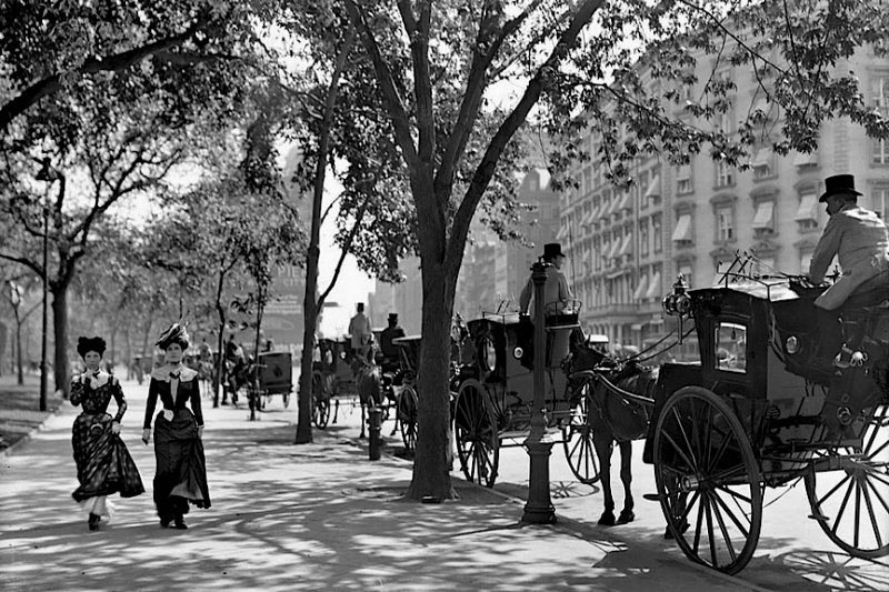 1900 - Carriages waiting at Madison Square