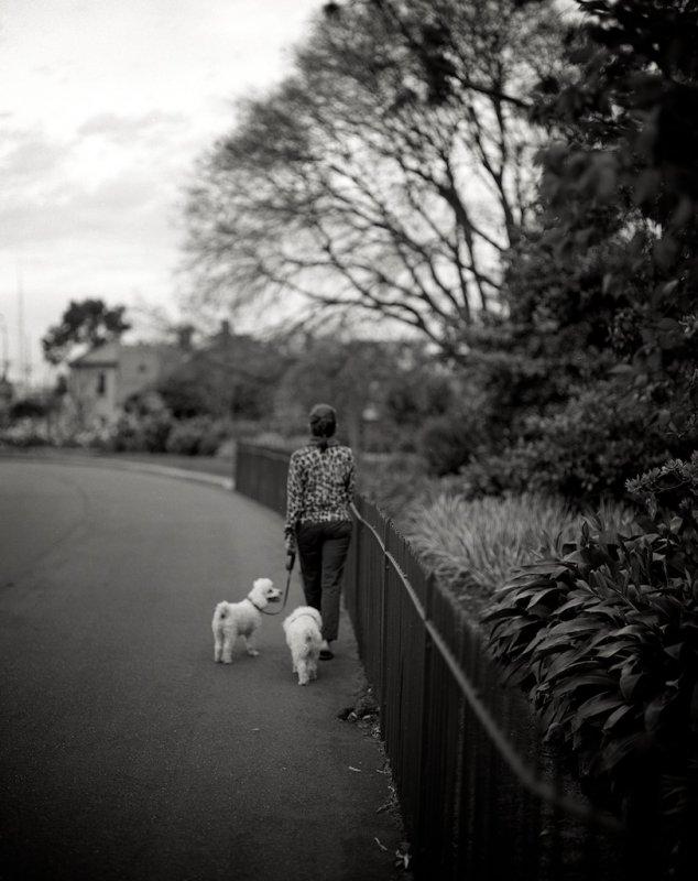 Melbourne, Australia 28.jpg