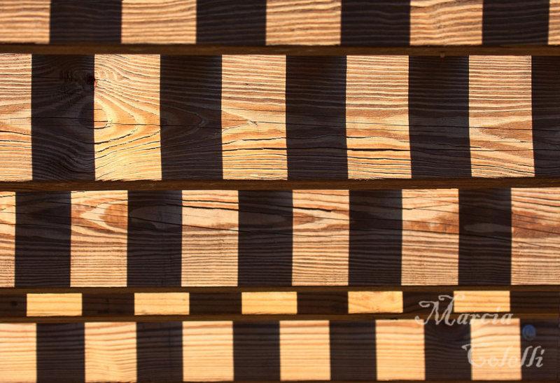 SHADOW PLAY_6960-bw.jpg