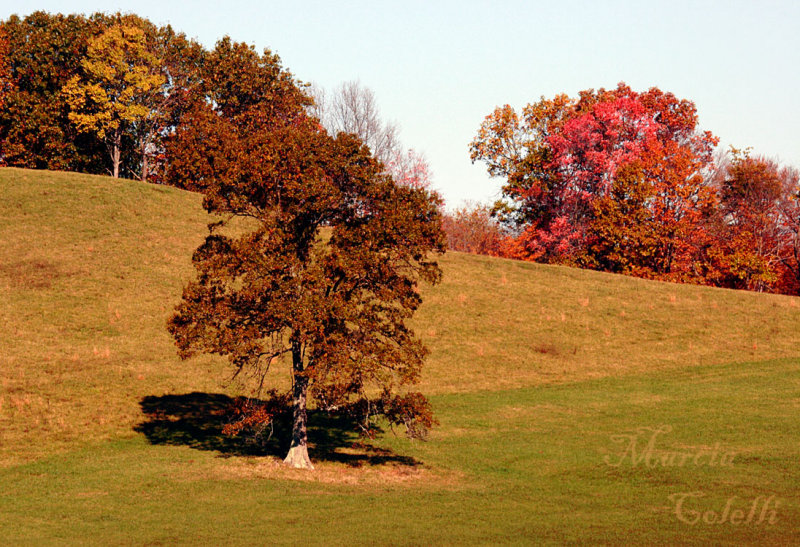 CONKLE HOLLOW-3130a.jpg