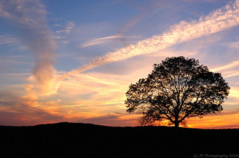 _JFF5117 Early Sunset copy.jpg