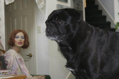 Hello...  I'd like you to meet my friend Lucy.