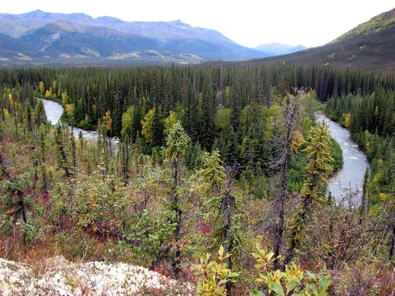 Marion Creek