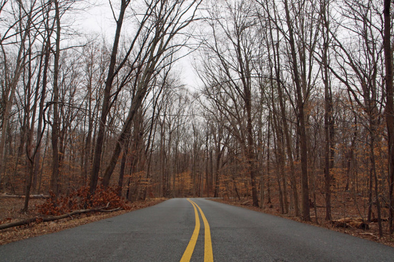The road at Carderock