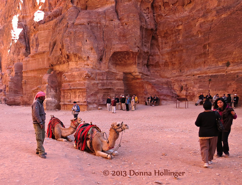A Bedouin Man with Camels at the Treasury