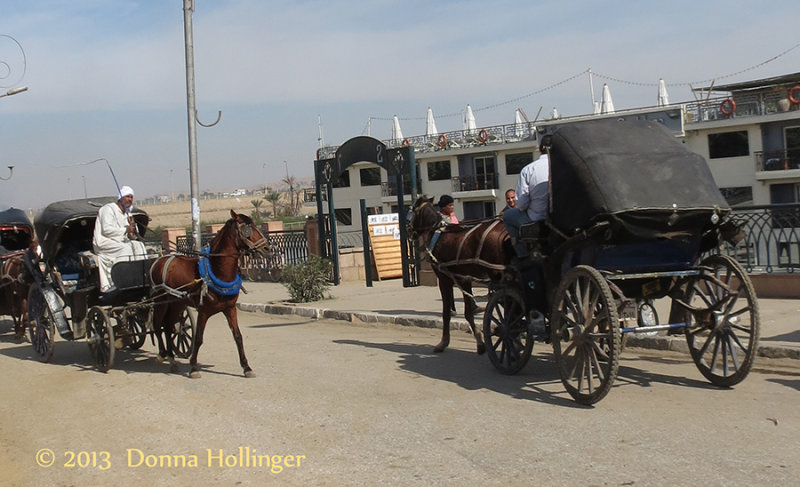 Travelling by Carriage in Egypt