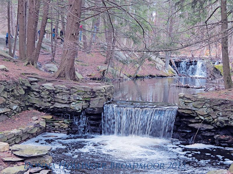 Waterfalls at Broadmoor