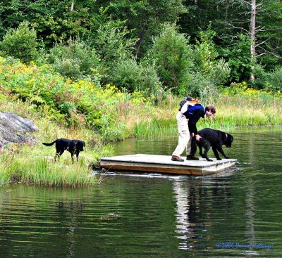Lexie, Max and Romeo at Dick's Pond