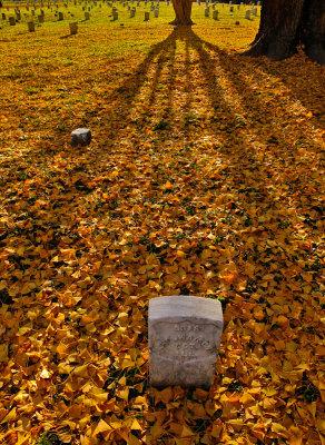 Cemetery, National Military Park, Vicksburg, Mississippi, 2012