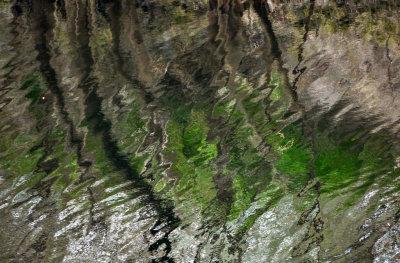 Suwannee River, White Springs, Florida, 2013