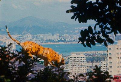 Hong Kong circa 1966