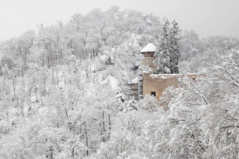 Schloss Birseck Winter