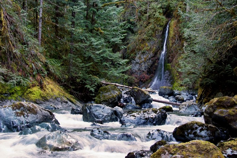 Image result for pictures of rosewall creek