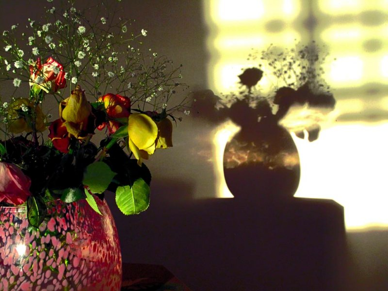 Flowershadow original.