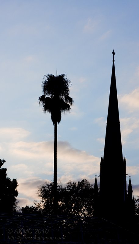 6902 St Patricks Cathedral Silhouette