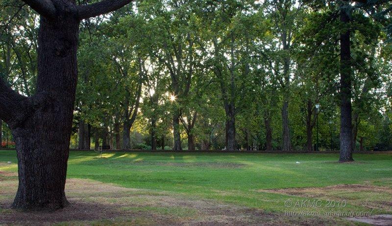 6977 Sunrise In Carlton Gardens
