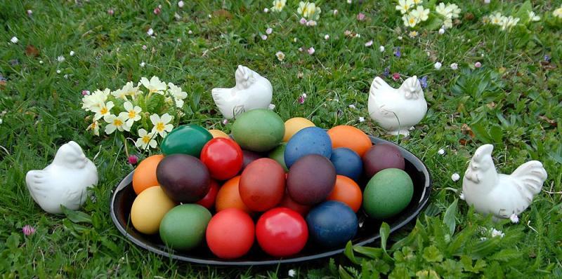 Freilandhaltung auch zu Ostern verboten !