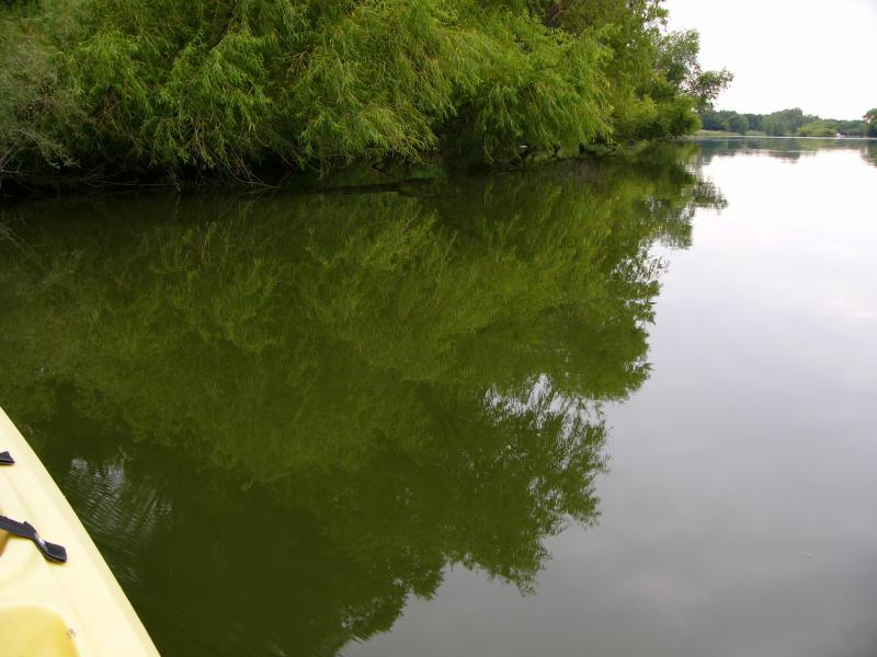 Deep Water Reflections-Des Moines River, West Fork