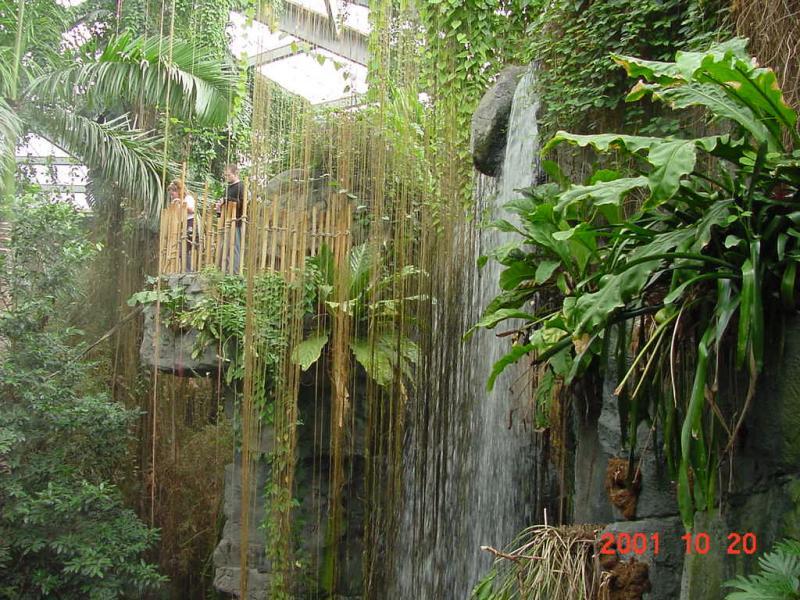 Omaha Zoo, Rain Forest