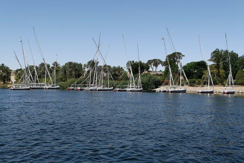 Assouan - 476 Vacances en Egypte - MK3_9337_DxO WEB.jpg