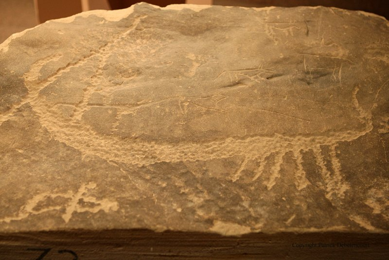 Assouan visite du musee Nubien - 904 Vacances en Egypte - MK3_9778 WEB.jpg