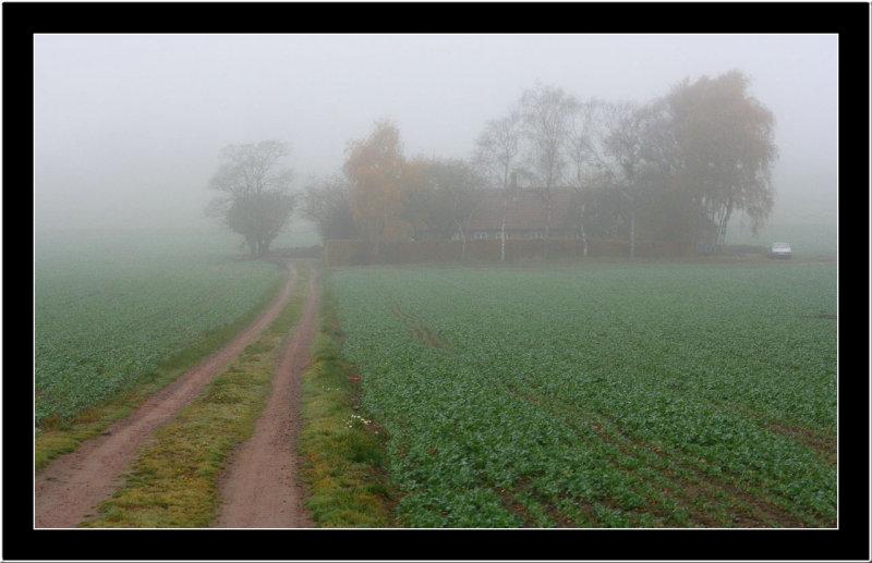 20071102 / Foggy morning