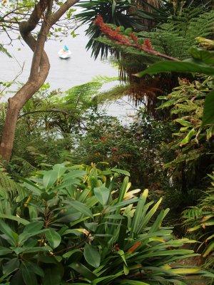 Steps through the garden