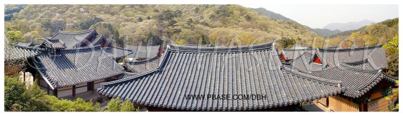 Temple Roof Lines of Songgwangsa Buddhist Temple