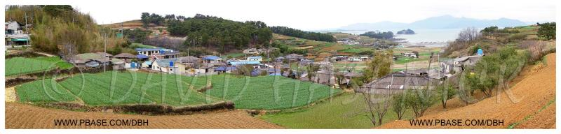 South Coast Fishing Village with Spring Garlic Fields