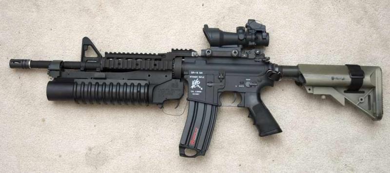 Mi nuevo rifle Large
