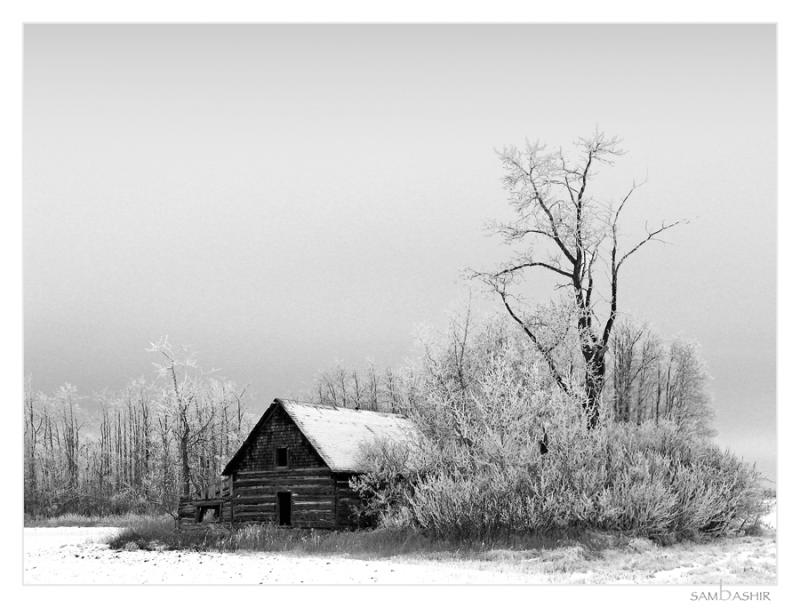 This Old House - B&W Version
