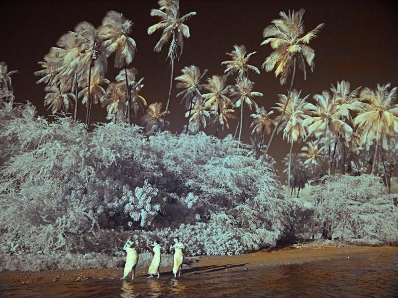 IR Palms and Girls