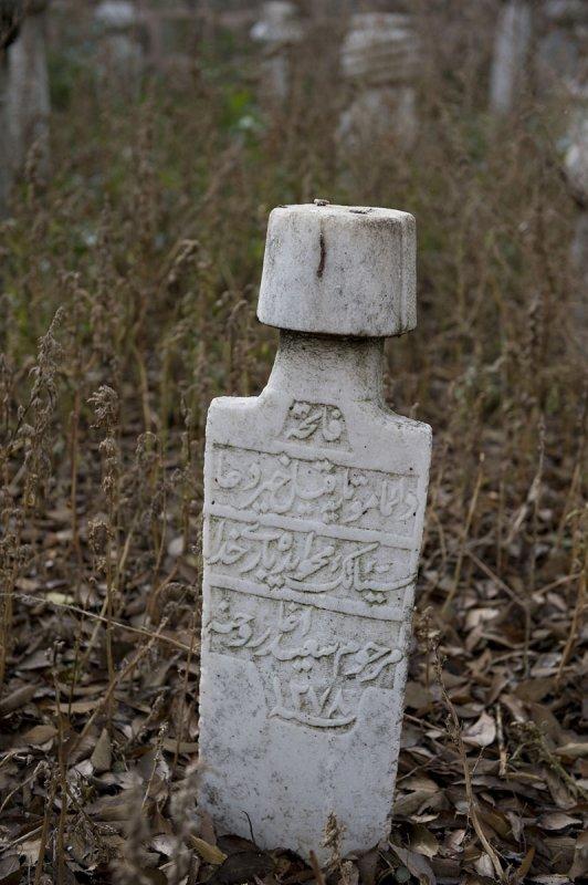 Edirne december 2009 6143.jpg