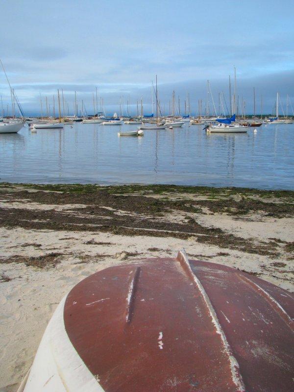 Beached Boat.jpg