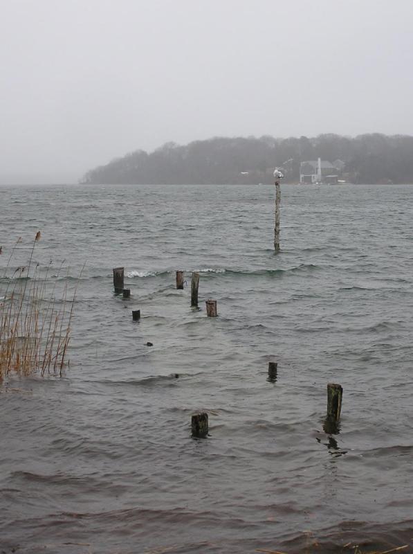 High Tide - Low Dock.jpg