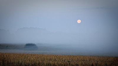 Full Moon in Fog