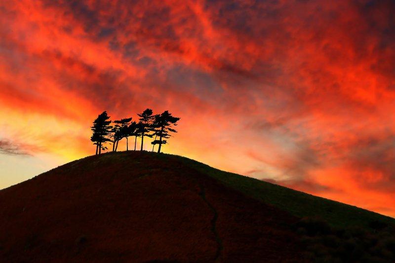 Colmers Hill sunset, Bridport (3137)